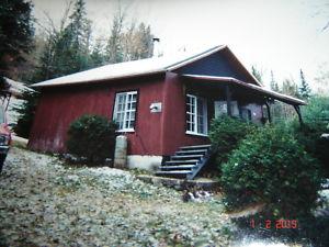 maison #1389185209